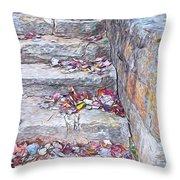 Colorful Fall Leaves Autumn Stone Steps Old Mentone Inn Alabama Throw Pillow