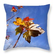 Colorful Fall Leave's With Blue Sky Throw Pillow