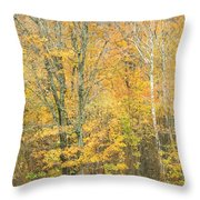 Colorful Fall Trees In Maine Throw Pillow