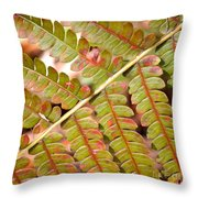 Colorful Fern Square Throw Pillow
