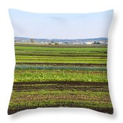 Colorful Fields Throw Pillow