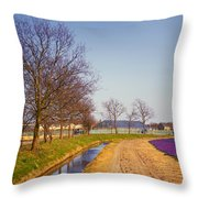 Colorful Fields Of Holland Throw Pillow