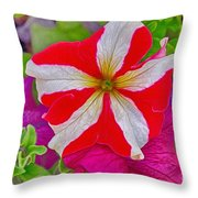 Colorful Garden Flower Throw Pillow