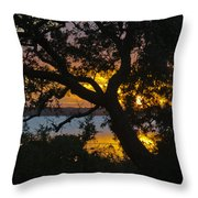 Colorful Glow Throw Pillow