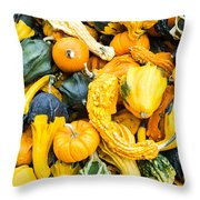 Colorful Gourds  Throw Pillow