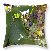 Colorful Grapes Growing On Grapevine Throw Pillow