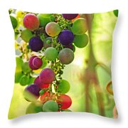 Colorful Grapes Throw Pillow