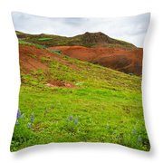 Colorful Iceland Landscape With Green Orange Brown Tones Throw Pillow
