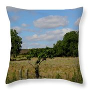 Colorful Kansas Country Pasture Throw Pillow