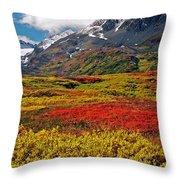 Colorful Land - Alaska Throw Pillow