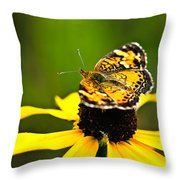 Colorful Landing Throw Pillow