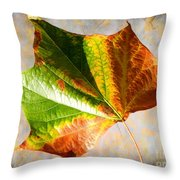 Colorful Leaf On The Ground Throw Pillow