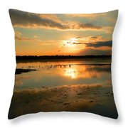 Colorful Light Throw Pillow
