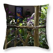 Colorful Macaw And Other Birds At The Jurong Bird Park In Singapore Throw Pillow
