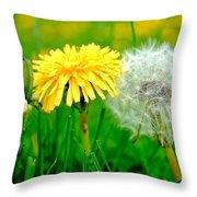 Colorful Macro Throw Pillow