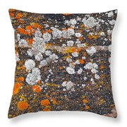Colorful Moss Spots On A Gneiss Rock Throw Pillow