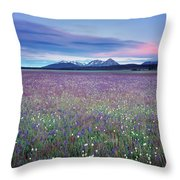 Colorful Mountain Spring Throw Pillow