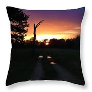 Colorful Mudholes Throw Pillow