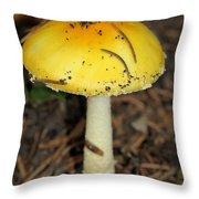 Colorful Mushroom Throw Pillow