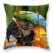 Colorful Notes Throw Pillow