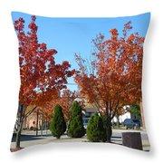 Colorful Ohio Trees Throw Pillow