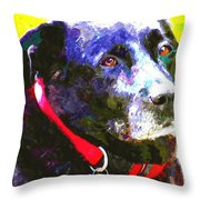 Colorful Old Dog Throw Pillow