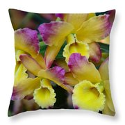 Colorful Orchids Throw Pillow