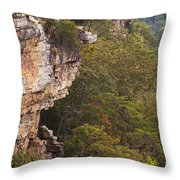 Colorful Overlook Throw Pillow
