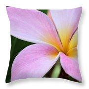 Colorful Pink Plumeria Flower Throw Pillow