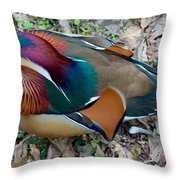 Colorful Plume Throw Pillow