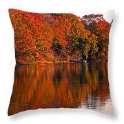 Colorful Shores Throw Pillow