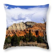 Colorful Southwest Throw Pillow