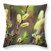 Spring Pussy Willows Throw Pillow