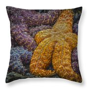 Colorful Starfish Throw Pillow