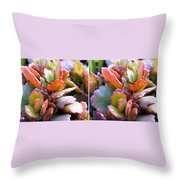 Colorful Succulents In Stereo Throw Pillow