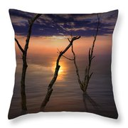 Colorful Sunset Seascape With Tree Trunks Throw Pillow