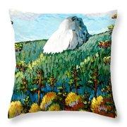 Colorful View Of Idyllwild California Throw Pillow
