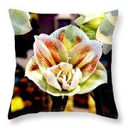 Colorful White Throw Pillow