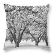 Colorless Cherry Blossoms Throw Pillow