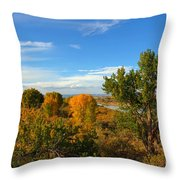 Colors Along The Colorado Throw Pillow
