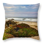Colors And Texures Of The California Coast Throw Pillow