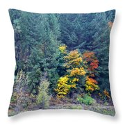Colors Are Starting To Pop Throw Pillow