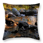 Colors Changing Throw Pillow