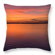 Colors Of Carolina Throw Pillow