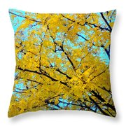 Colors Of Fall 1 Throw Pillow