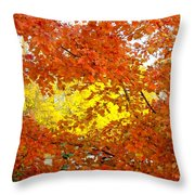 Colors Of Fall 2 Throw Pillow