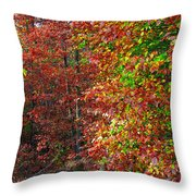 Colors Of Fall 4 Throw Pillow