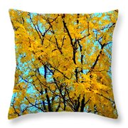 Colors Of Fall - Smatter Throw Pillow