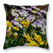 Colors Of Flower  Throw Pillow