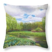 Colors Of Spring At Millbrook Marsh Throw Pillow